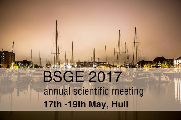 BSGE 2017